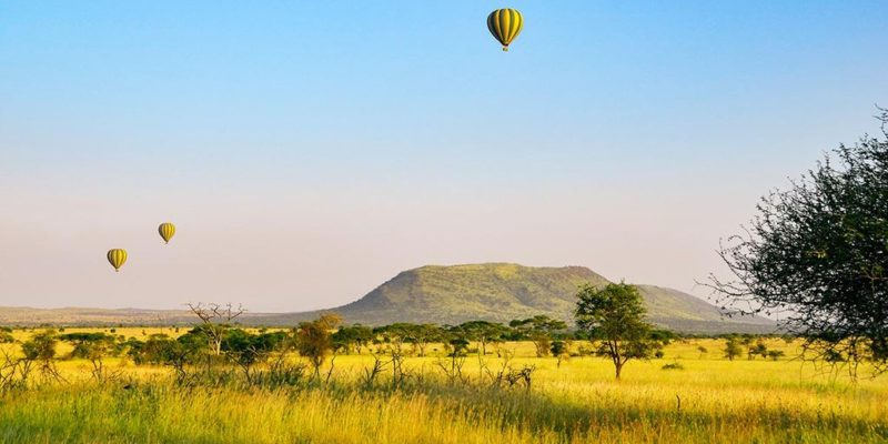serengeti balloon